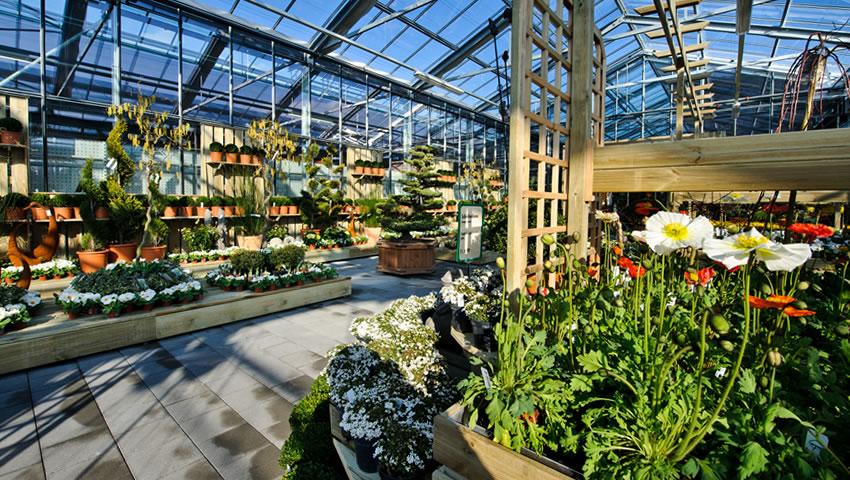 Gartenhaus Wyss Hochzeit