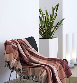 Serie Pflanzen für verschiedene Wohnräume 2/7: Schlafzimmer