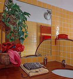 Serie Pflanzen Für Verschiedene Wohnräume 37 Bad